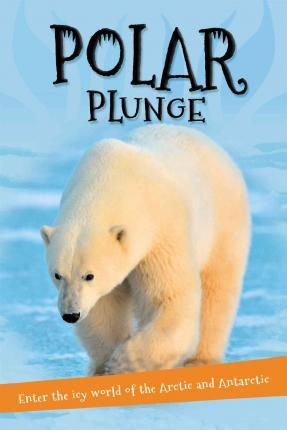 It's All About... Polar Plunge