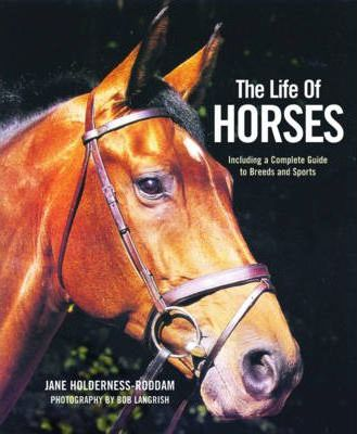 The Life of Horses