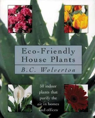 Eco-friendly Houseplants