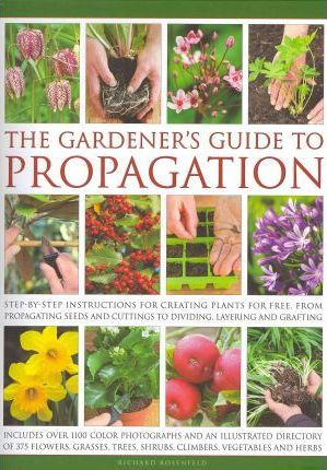 Gardener's Guide to Propagation
