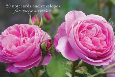 Card Box of 20 Notecards and Envelopes: Pink Rose