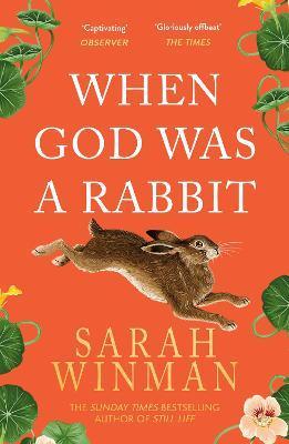 When God was a Rabbit Cover Image
