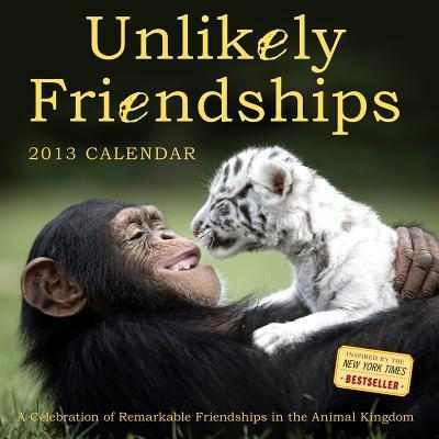 Unlikely Friendships Calendar 2013