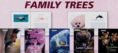 Family Trees Group 3
