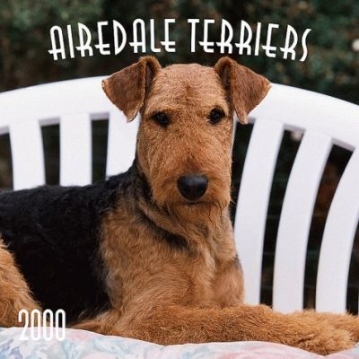 Airedale Terriers 2000 Calendar