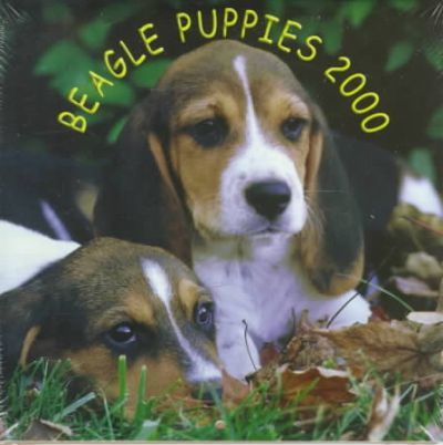 Beagle Puppies 2000 Calendar