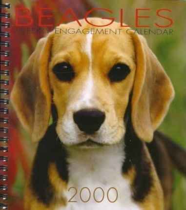 Beagles Weekly Engagement Calendar