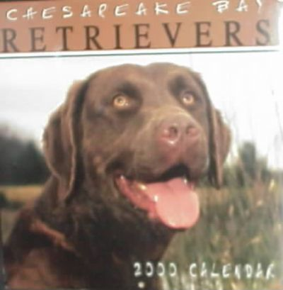 Chesapeake Bay Retrievers 2000 Calendar
