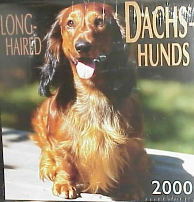 Long-Haired Dachshunds 2000 Calendar