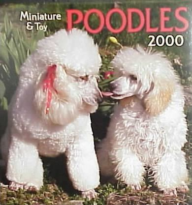 Miniature & Toy Poodles 2000