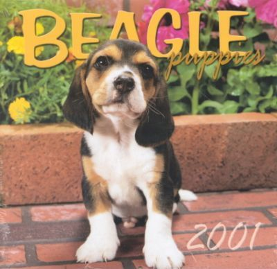 Beagle Puppies 2001 Calendar