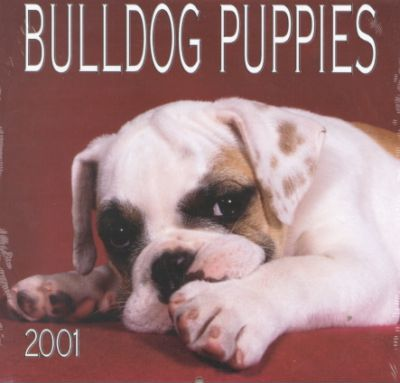 Bulldog Puppies 2001 Calendar