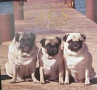 For the Love of Pugs 2001 Calendar