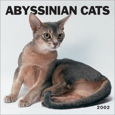 Abyssinian Cats: 2002