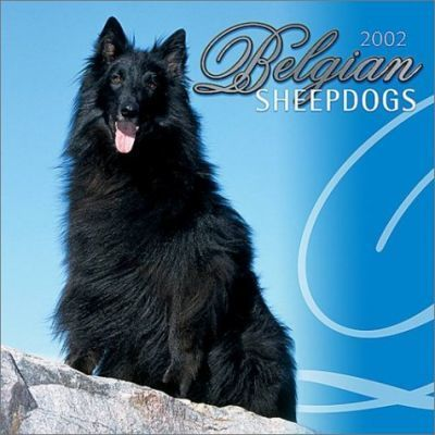 Belgian Sheepdogs: 2002