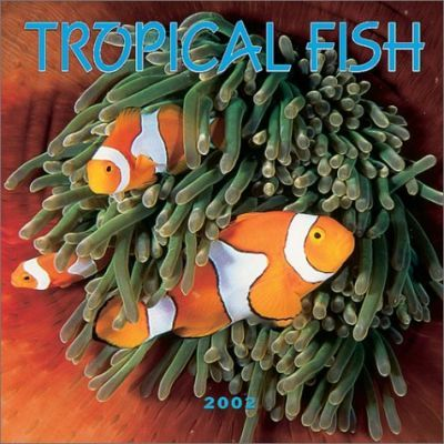 Tropical Fish: 2002