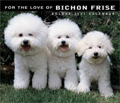 For the Love of Bichon Frise: 2002