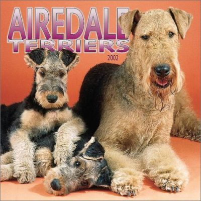 Airedale Terriers: 2002