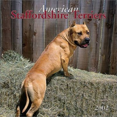 American Staffordshire Terriers: 2002