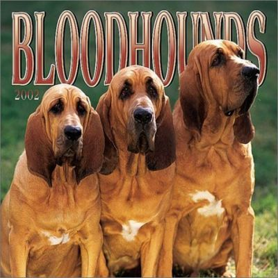 Bloodhounds: 2002