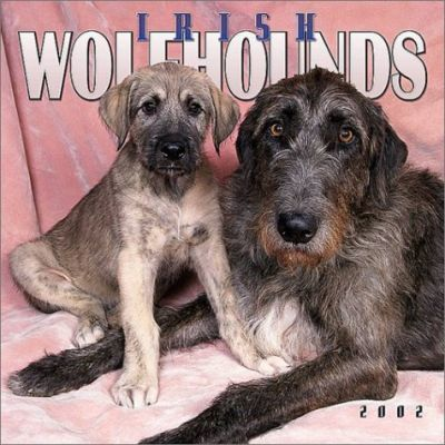 Irish Wolfhounds: 2002