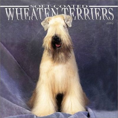 Wheaten Terriers, Soft-Coated: 2002