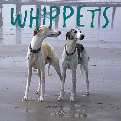 Whippets: 2002