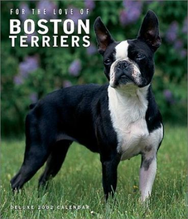 For the Love of Boston Terriers: 2002