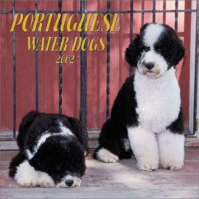 Portuguese Water Dogs: 2002