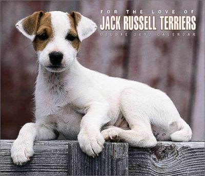 For the Love of Jack Russell Terriers: 2002