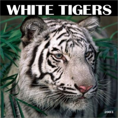 White Tigers: 2003