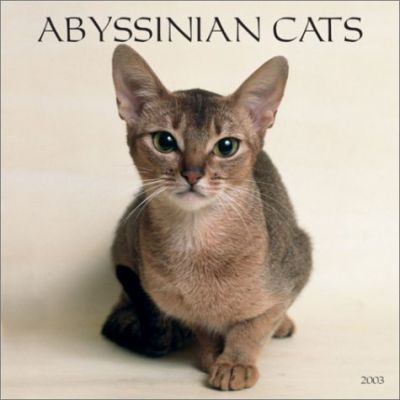 Abyssinian Cats: 2003