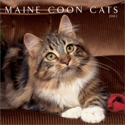 Maine Coon Cats: 2003