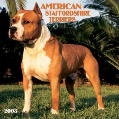 American Staffordshire Terriers: 2003