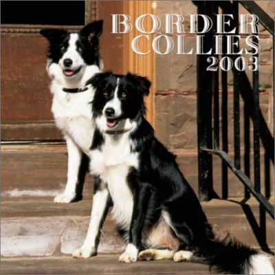 Border Collies: 2003