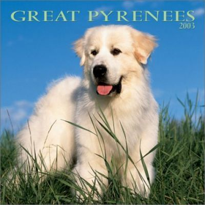 Great Pyrenees: 2003
