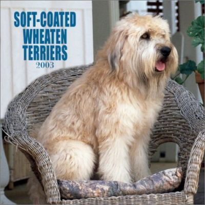 Soft-Coated Wheaten Terriers: 2003