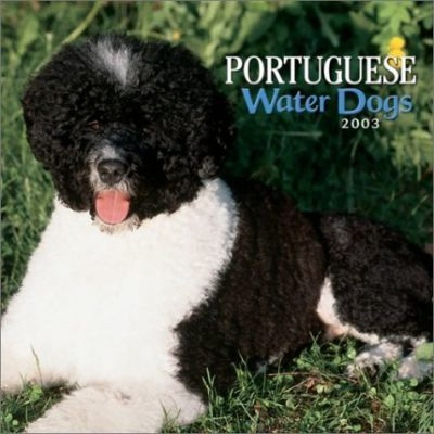 Portuguese Water Dogs: 2003