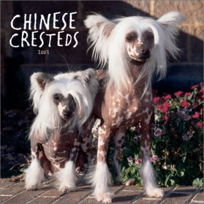 Chinese Cresteds: 2003