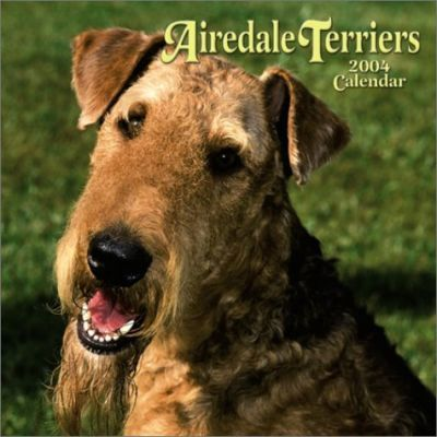 Airedale Terriers Wall Calendar: 2004