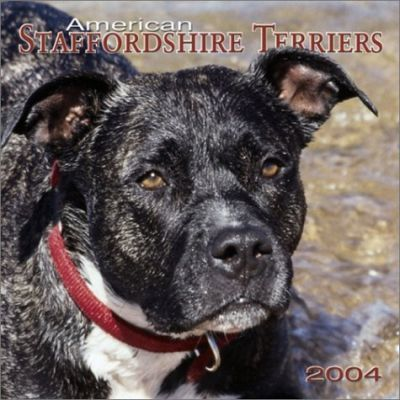 American Staffordshire Terriers Wall Calendar: 2004