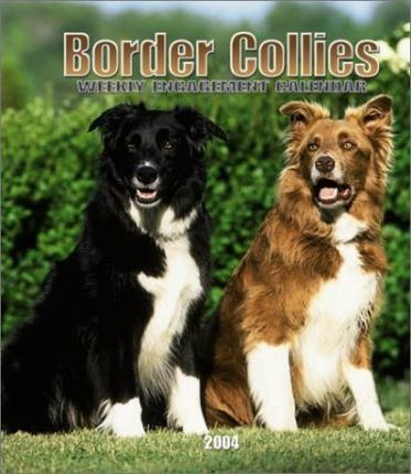 Border Collies Hardcover Weekly Engagement Calendar: 2004