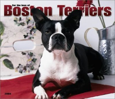 For the Love of Boston Terriers Deluxe Wall Calendar: 2004