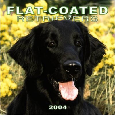 Flat-Coated Retrievers Wall Calendar: 2004