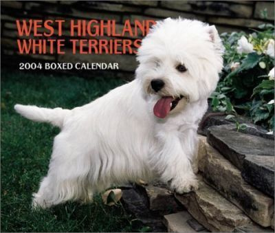 West Highland White Terriers Boxed Calendar: 2004