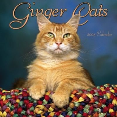 Ginger Cats Wall