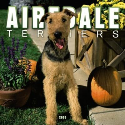 Airedale Terriers Wall