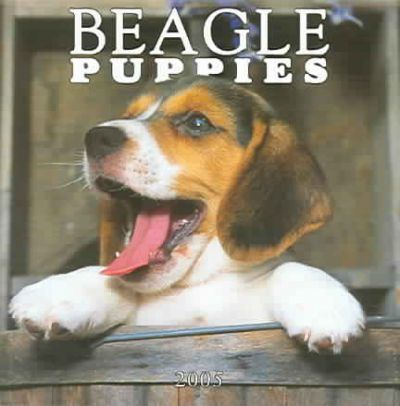 Beagle Puppies Mini 2005 Calendar