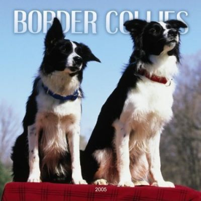 Border Collies Wall Calendar 2005