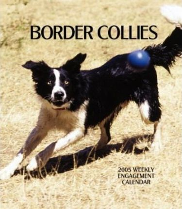 Border Collies Hardcover Weekly Engagement